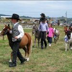 100th Helensville A&P Show