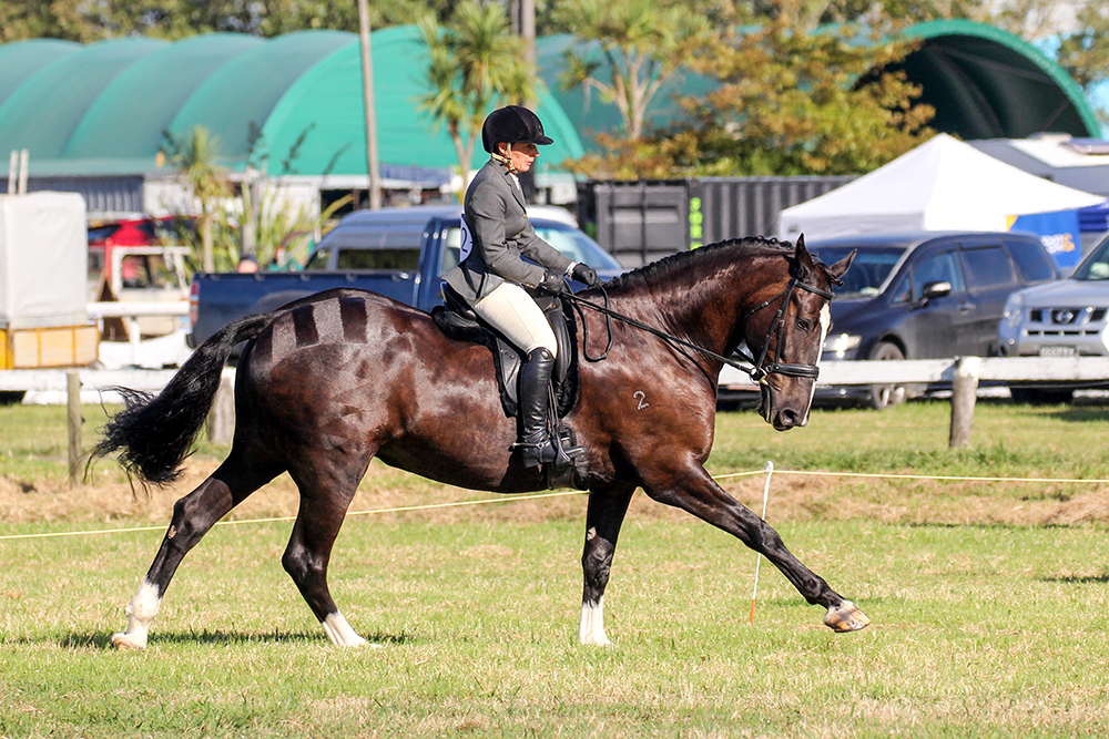 Equestrian action at the 2021 Helensville Show