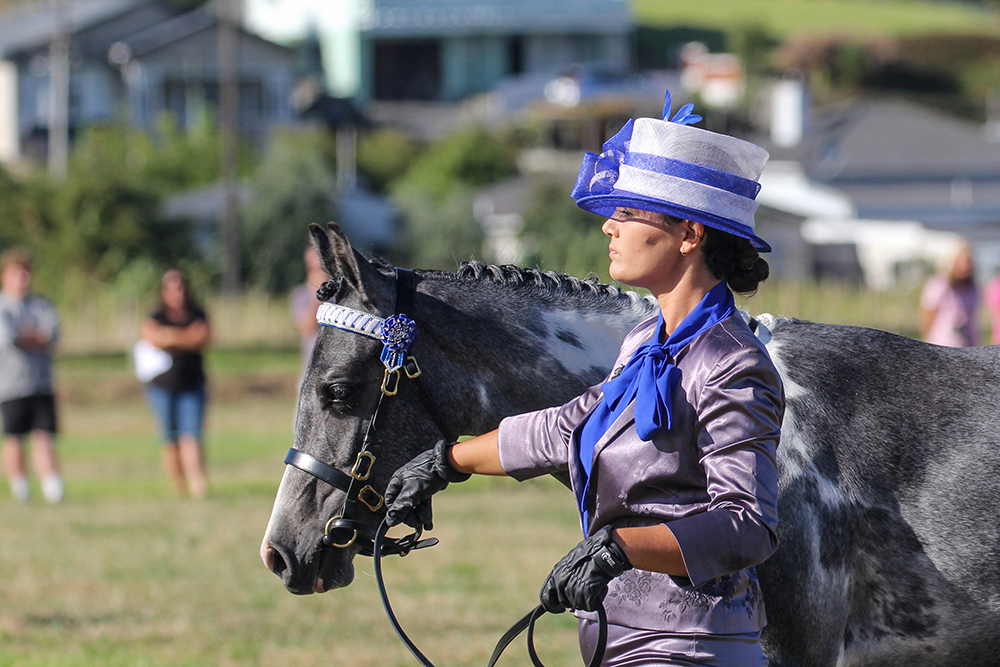 Equestrian elegance at the 2021 Helensville Show