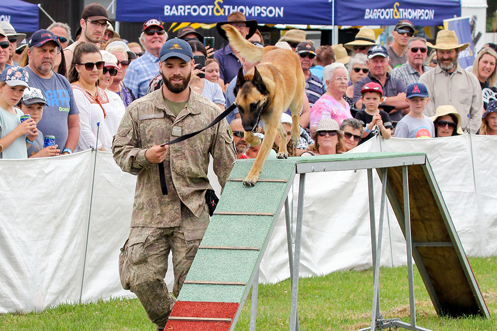 RNZAF military dog display at the 2021 Helensville Show
